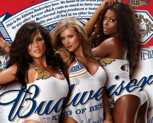 Budweiser Litigation
